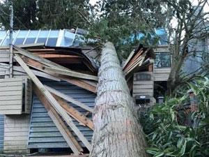 Emergency-Roof-Repair-Job