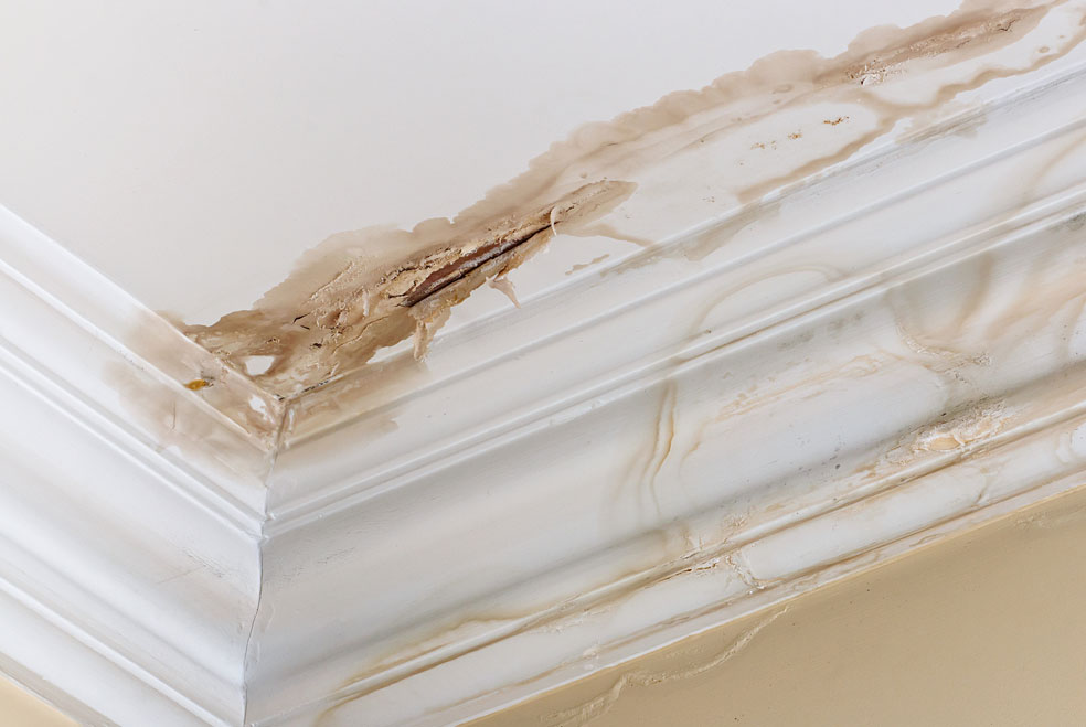 How-to-Fix-a-Leaky-Roof