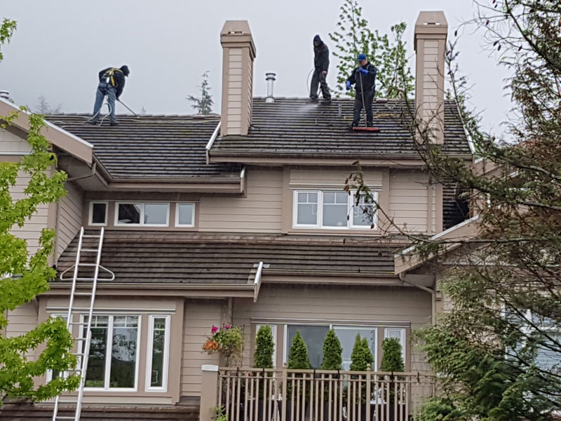 Repair or Roof Replacement – How to Choose?