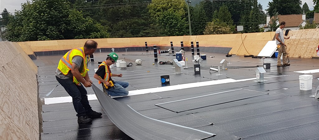 Best Roofing Material for Commercial Roofs